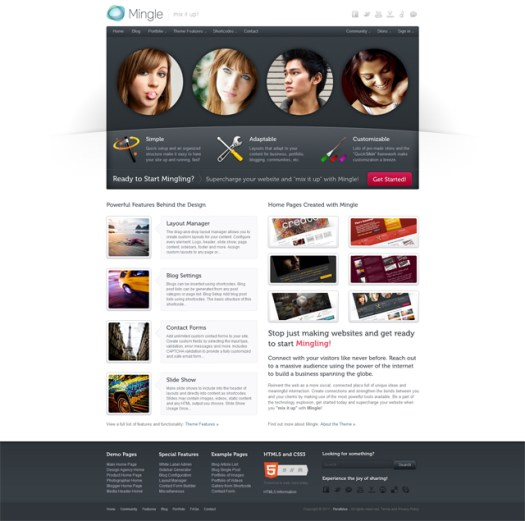 WordPress Buddypress Themes