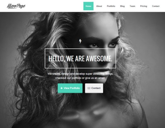 MicroPage-responsive-WordPress-vcard-theme
