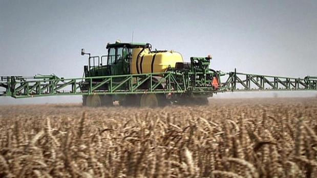 Landwirtschaftliches Fahrzeug versprüht Glyphosat auf Getreidefeld