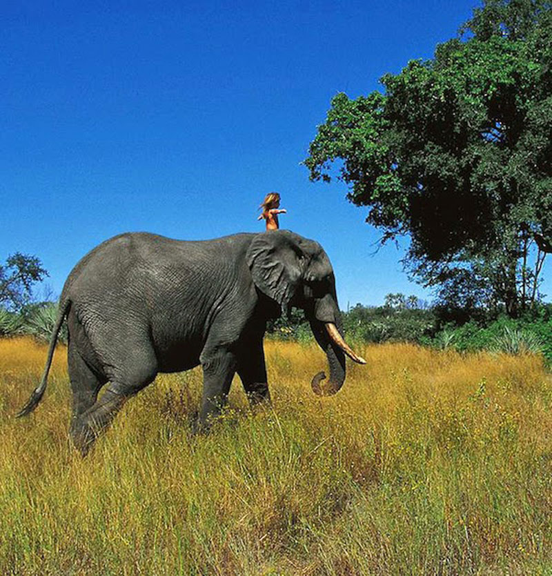 Breathtaking-Photos-Of-A-Little-Girl-'Tippi'-Growing-Up-Alongside-Wild-Animals-in-Southern-Africa13