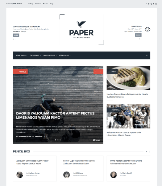 paper wordpress buddypress ecommerce magazine theme