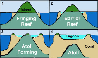 A diagram of atoll formation, as described in the text.