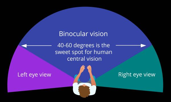 binocular-vision-from-infographic
