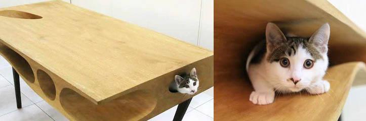 人々が使い、そして猫がさまようことができるテーブル