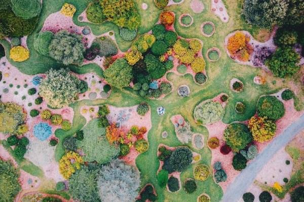 Природата като художник