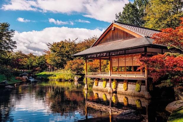 le jardin japonais d hasselt un petit bout de soleil levant a la belge loisirs plusmagazine