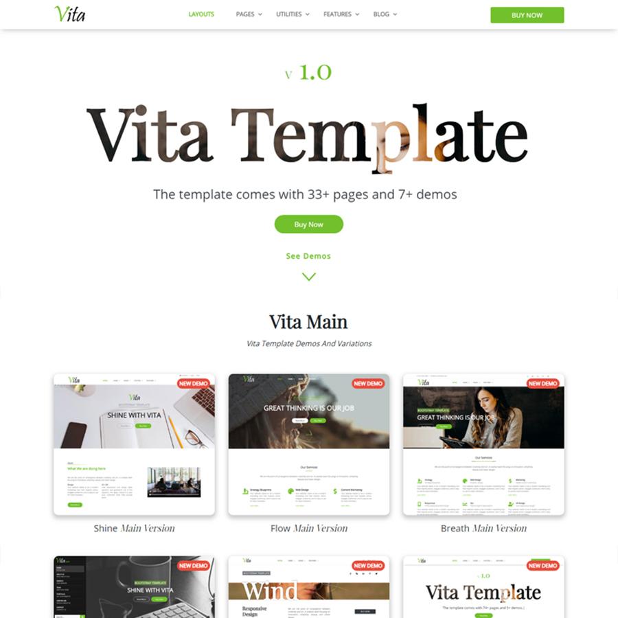 Vita - Responsive Website Template