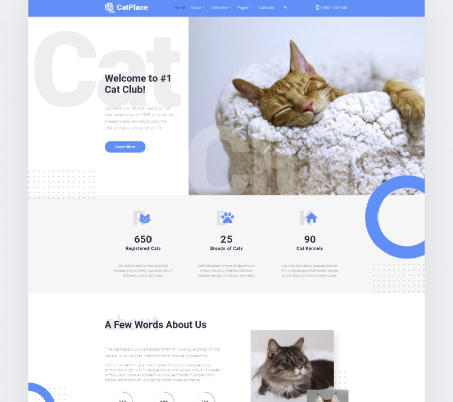 Cat Place HTML Website template