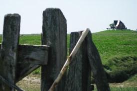 Drüben auf dem Hügel: Auch im Frühling ist die Hallig Nordstrandischmoor kein von Touristen überlaufener Urlaubsort. Foto: Julia Marre