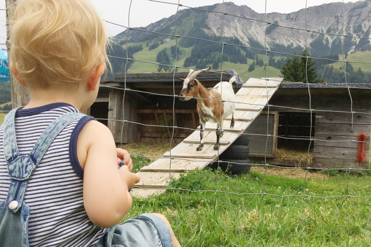 Auf dem Bauernhof und im Streichelzoo kann man was erleben. Auch als Mutter. Foto: Julia Marre