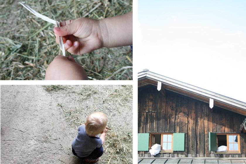 Ferien auf dem Bauernhof. Foto: Julia Marre