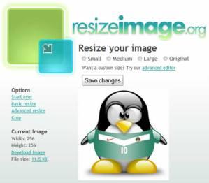 Redimensionar imagenes en ResizeImage.org