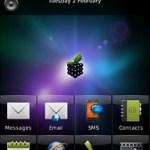 Temas blackberry Storm, Smart Berries - temas-blackberry-storm-8