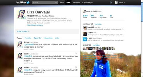 2011 06 10 18 22 341 Como hacer la barra lateral de Twitter totalmente transparente