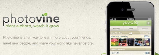 Photovine, la nueva red social fotográfica de Google - Photovine