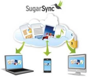 Sugarsync: tus archivos en la nube
