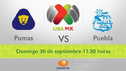 Pumas vs Puebla en vivo, Apertura 2012 - pumas-puebla-en-vivo-apertura-2012