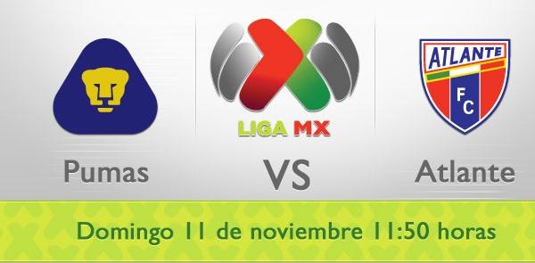 Pumas vs Atlante en vivo, Liga MX (Apertura 2012) - pumas-atlante-en-vivo-apertura-2012