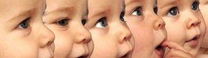 La clonación de humanos podría estar lista dentro de 50 años, según el premio nobel de medicina 2012
