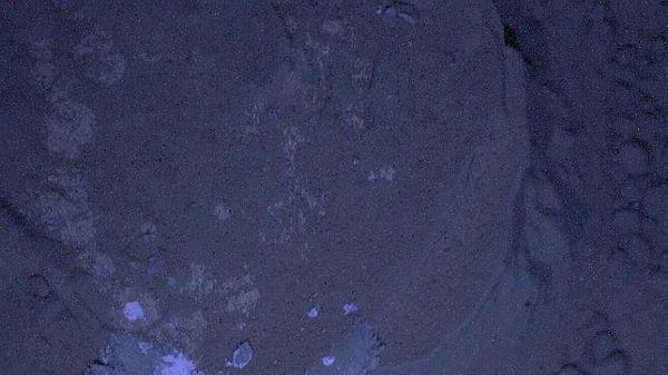 Primeras imágenes nocturnas de Marte tomadas por Curiosity - imagen-de-noche-en-marte