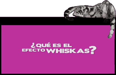 Inventos tecnológicos para tu gato - efecto-whiskas