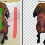 Quitar el fondo de fotos de forma fácil en ClippingMagic.com - quitar-fondo-imagenes-ejemplo