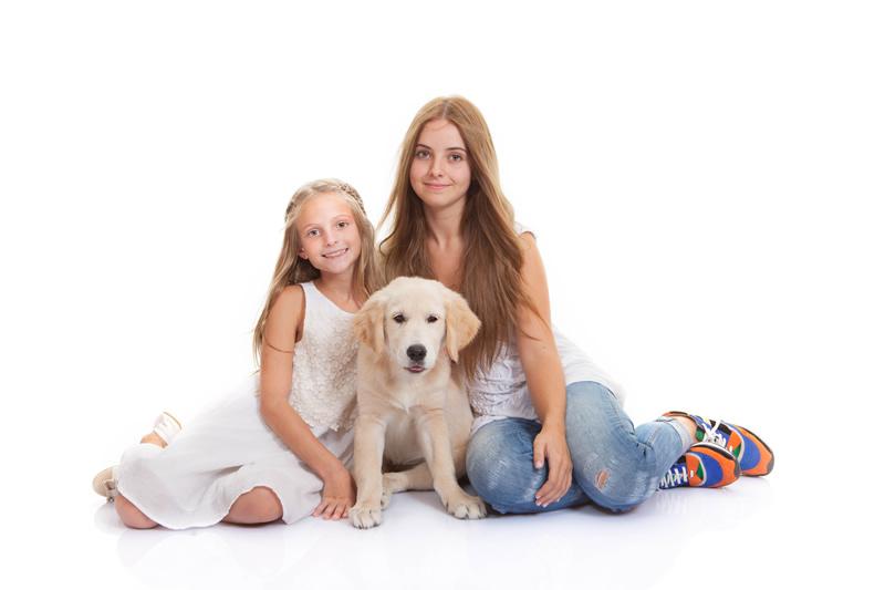 Consejos para cuidar a los animales en este día mundial del animal - consejos-cuidar-perro