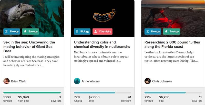 Experiment.com, plataforma para apoyar investigaciones científicas - proyectos-investigaciones-cientificas