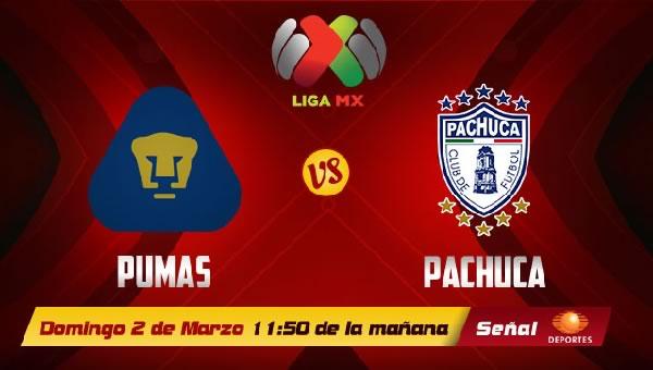 Pumas vs Pachuca en vivo, Jornada 9 Clausura 2014 - pumas-vs-pachuca-2014