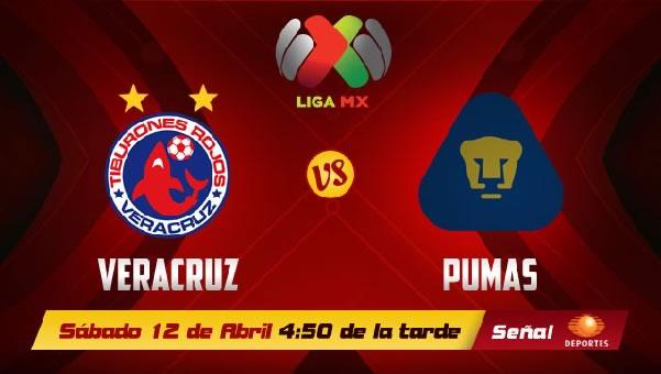 Pumas vs Veracruz en vivo, Jornada 15 Clausura 2014 - pumas-vs-veracruz-en-vivo-televisa