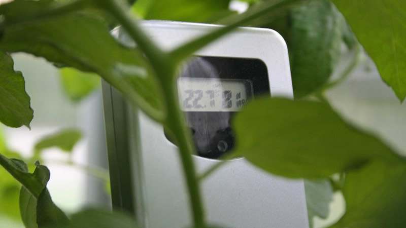 Diseñan tecnología de punta para invernaderos en la Universidad Autónoma de Zacatecas - tecnologia-invernaderos-zacatecas