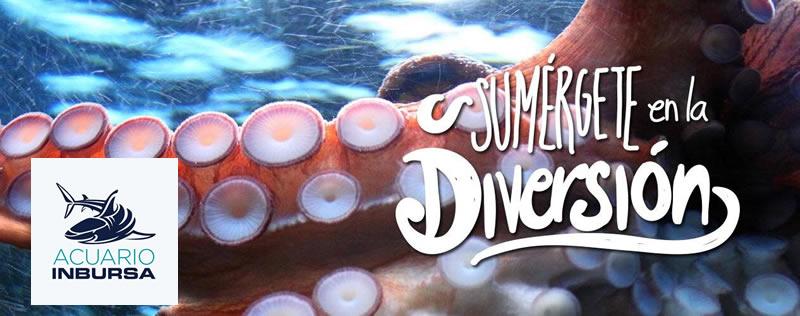 El Acuario Inbursa abre sus puertas este 11 de Junio - acuario-inbursa