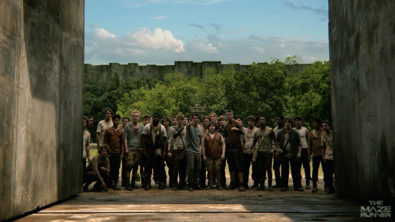 """""""The Maze Runner: Correr o Morir"""" apunta a ser el nuevo Hunger Games, conoce su tráiler - the-maze-runner-correr-o-morir-800x450"""