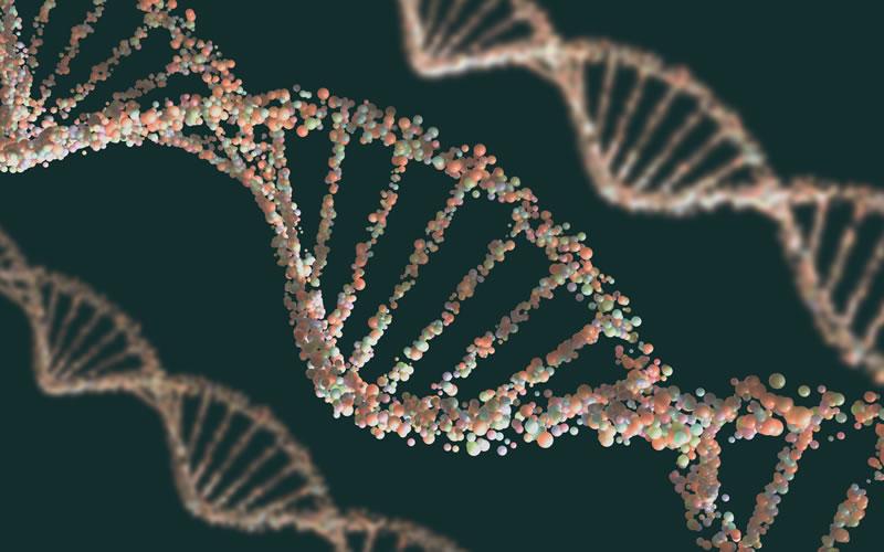 Carrera de Ciencias Genómicas de la UNAM entre las más avanzadas en el mundo - Estructura-de-ADN