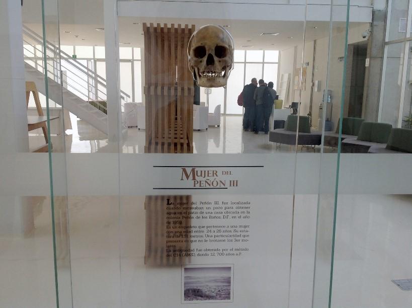 Exhiben cráneos de los primeros pobladores de México - craneos-de-los-primeros-pobladores-de-Mexico