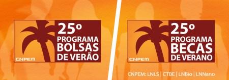 Becas de verano para Universitarios en Brasil