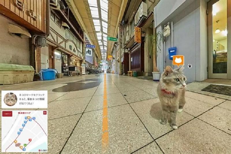 Cat Street View muestra Japón desde la perspectiva de un gato - Cat-Street-View-800x533