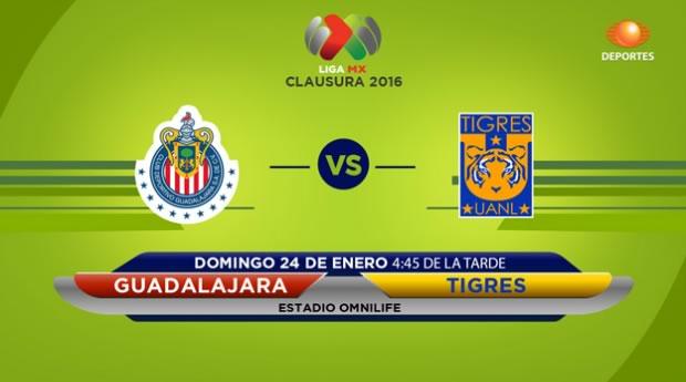 Chivas vs Tigres, Fecha 3 del Clausura 2016 - chivas-vs-tigres-clausura-2016-en-vivo-por-tdn