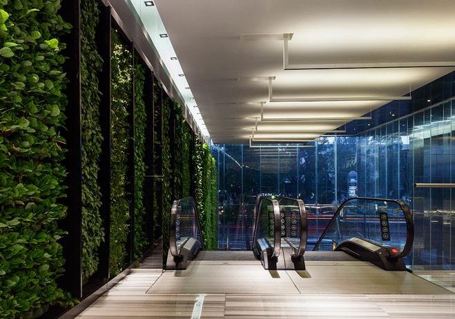 Tendencia LEED en México, los edificios certificados como sustentables. - torre-vistral-leed