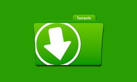 Descubren el torrent más antiguo en la web; lleva casi doce años activo