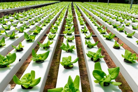 """Implementan """"Economía social solidaria"""", genera conocimientos de sustentabilidad en Pymes"""