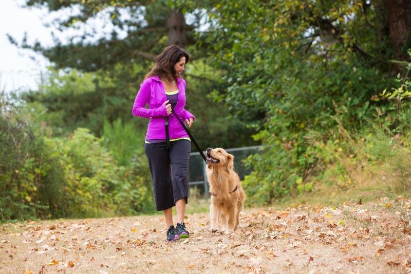 Pasear al perro ayuda a sus dueños a mantenerse saludables - pasear-al-perro-ayuda-a-sus-duenos-a-mantenerse-saludables-800x533