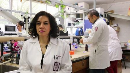 Científica mexicana desarrolla dispositivo que detecta hipertensión arterial con muestra de sangre