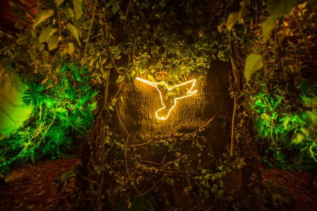 Paraíso Secreto CDMX, una experiencia inmersiva de realidad virtual y arte