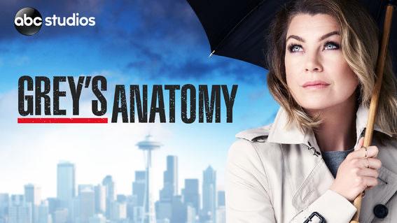 32 estrenos que podrás ver en Netflix durante septiembre 2017 - greys-anatomy-estrenos-netflix-septiembre-2017