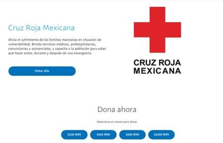 Puedes donar a la Cruz Roja o Unicef por Paypal ¡Conoce cómo hacerlo!