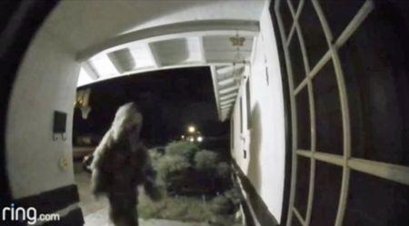 """El escurridizo """"hombre planta"""" es capturado gracias al video timbre de Ring"""