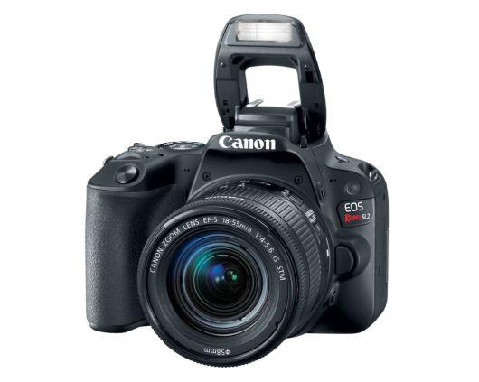 Nueva Canon EOS Rebel SL2: ideal si quieres iniciar en el mundo de la fotografía - eos-rebel-sl2-canon-1