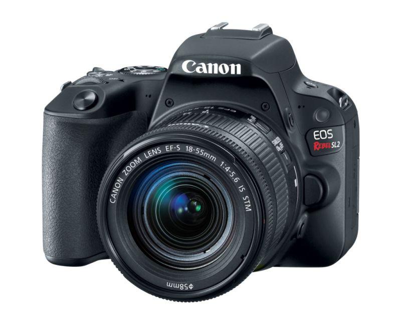 Nueva Canon EOS Rebel SL2: ideal si quieres iniciar en el mundo de la fotografía - eos-rebel-sl2-canon-5-800x640