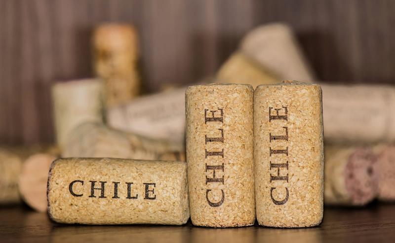 Los mejores vinos chilenos en 2017 elegidos en el AWoCA - mejores-vinos-chilenos-2017-800x493